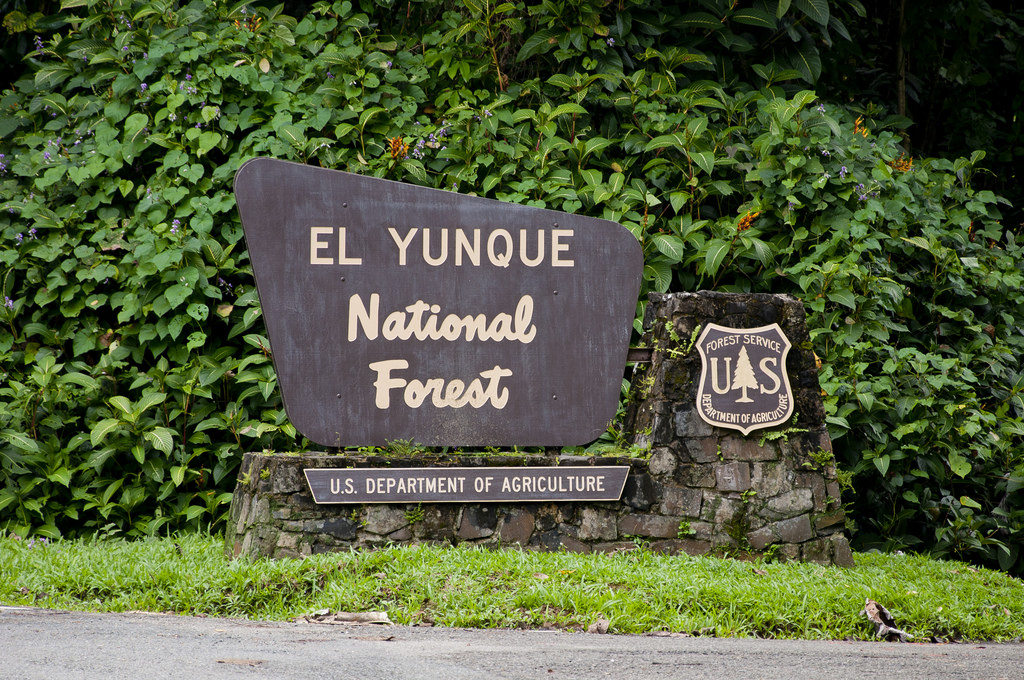 Entrance sign for El Yunque National Forest